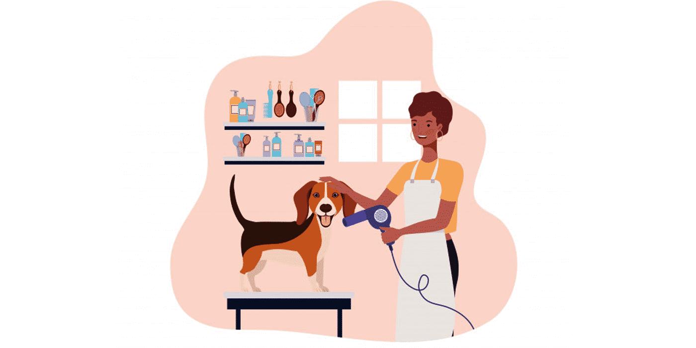 travailler chez soi : devenir Toiletteur